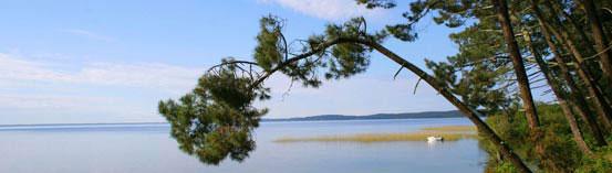Lac-de-Cazaux---N0880b_1212